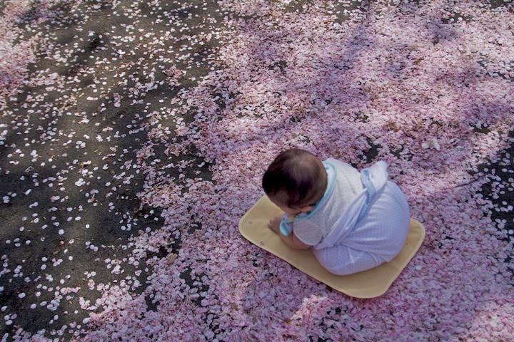 4-12-桜の中のレイナ.jpg